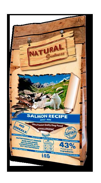Salmon Recipe Mini