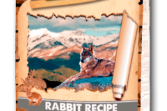 Rabbit Recipe Light & Fit
