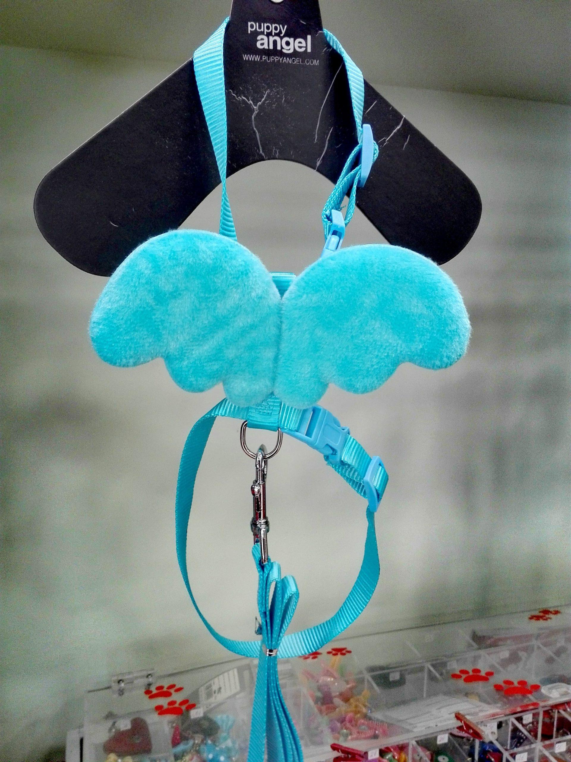 Γαλάζιο Σαμαράκι με φτερά