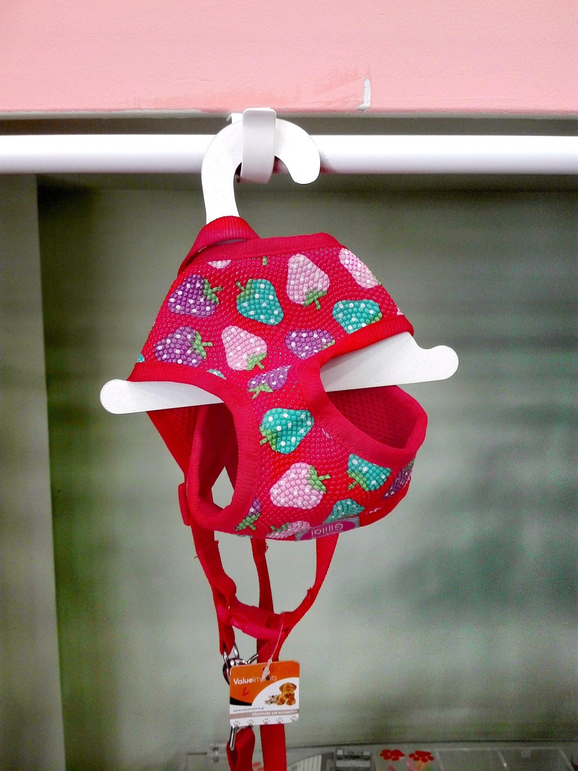 Κόκκινο Σαμαράκι με φράουλες